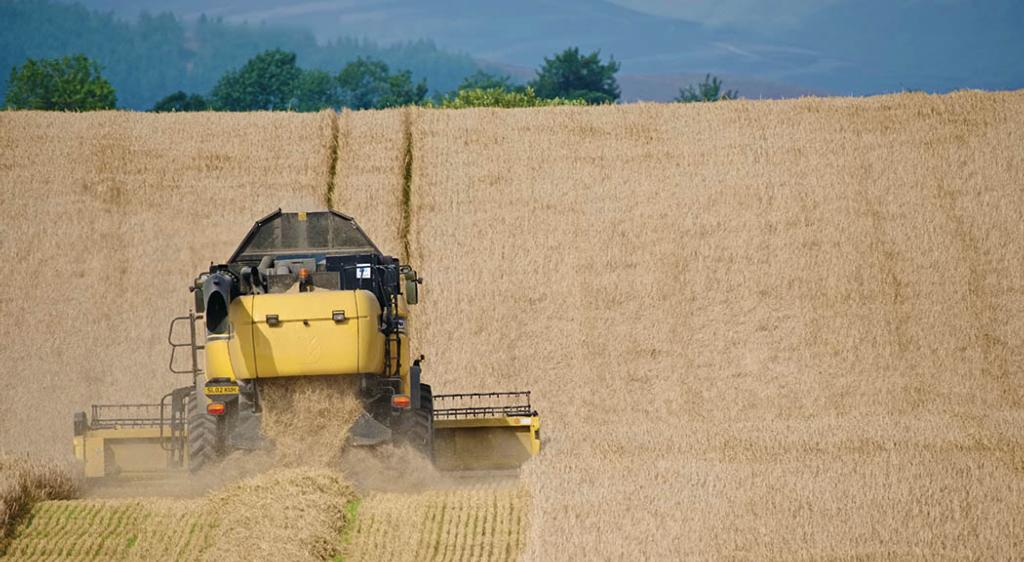 Strong early results for harvest despite weather concerns