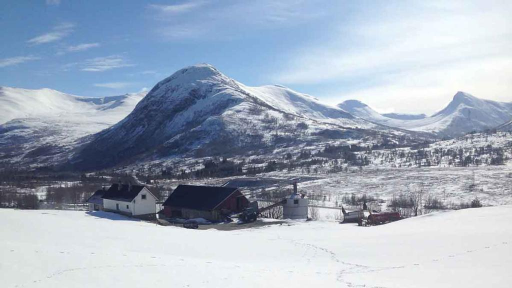 Ag in my Land: UK couple move to Norway to start farming