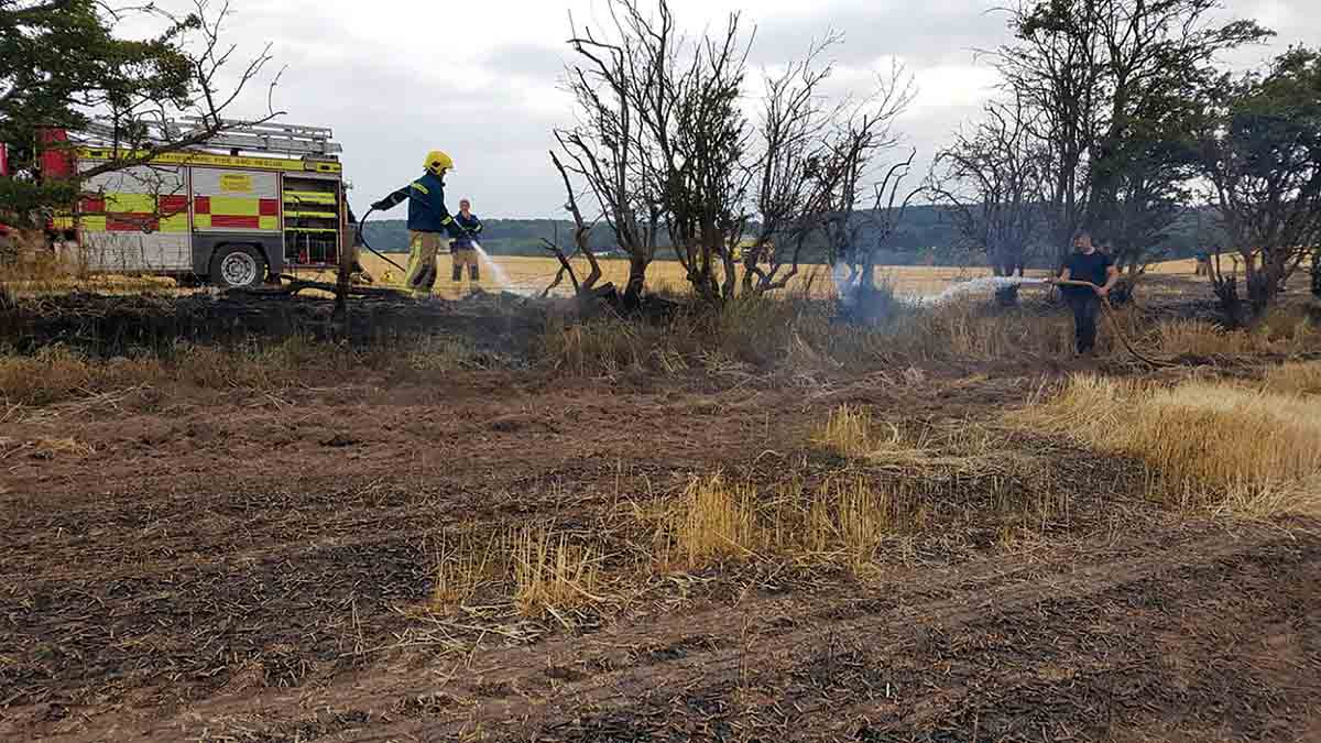 Arsonists target crops after council ignores plea to shut footpath