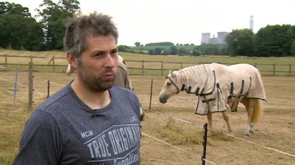 'We don't want to be here' - farm could be sold after animals attacked by thugs