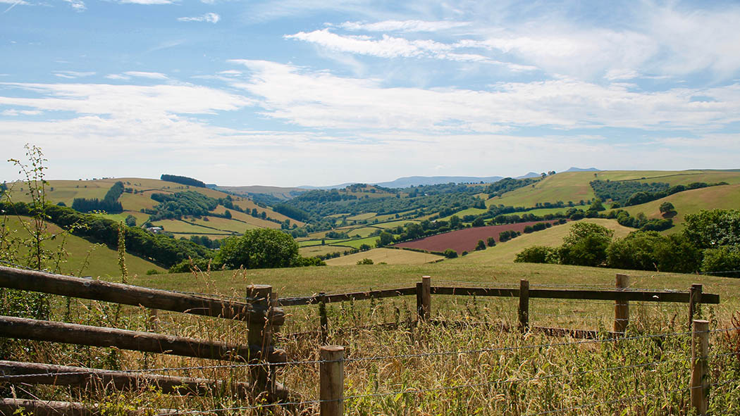 £45m Government funding into rural broadband 'great news'