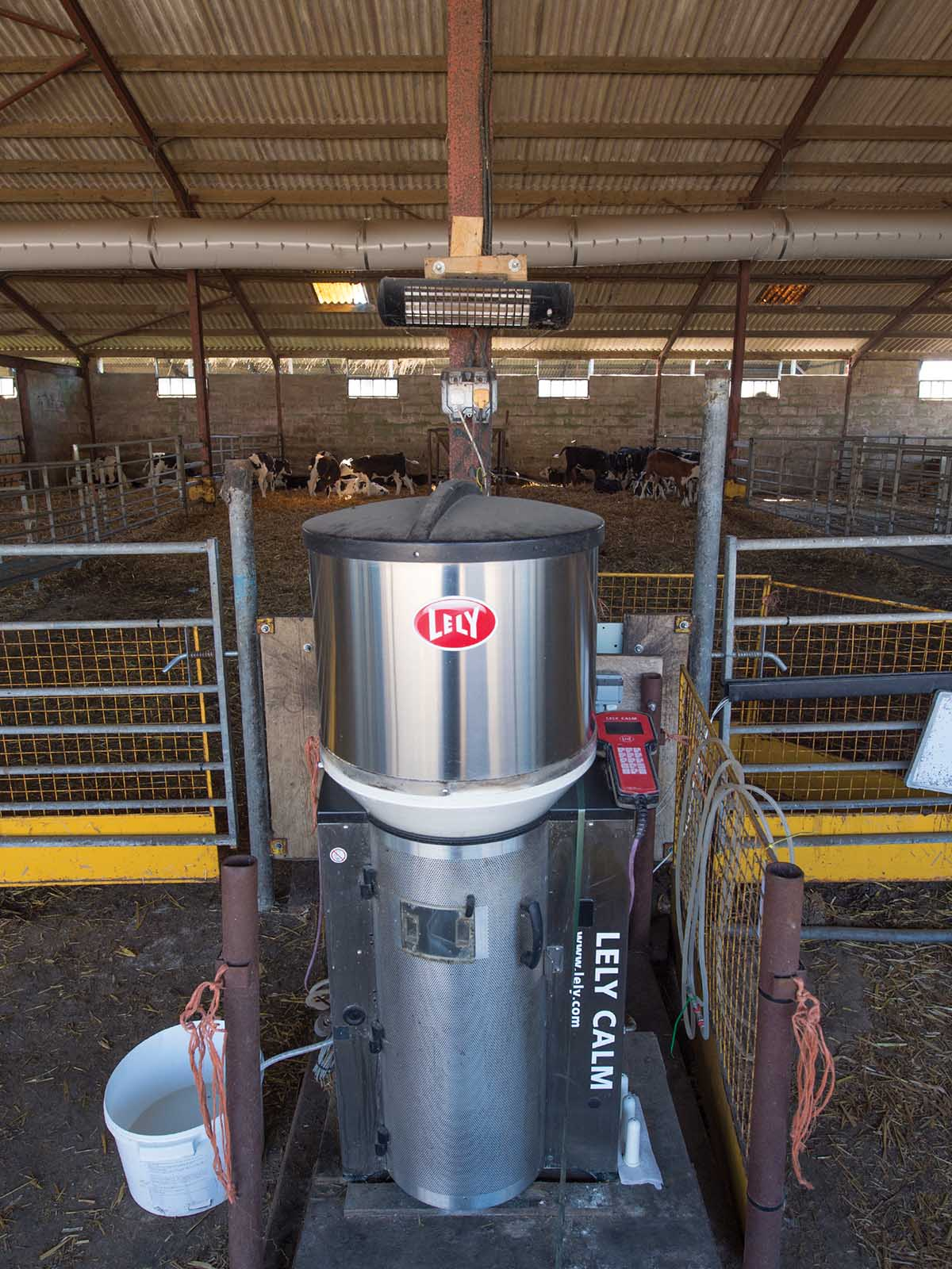 Cows are fed using in-parlour and out-of-parlour feeders.