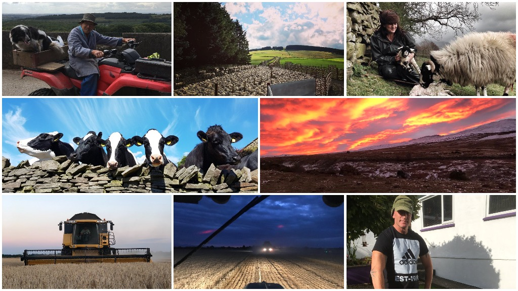 #Farm24 record smashed as farmers, celebrities and politicians take part