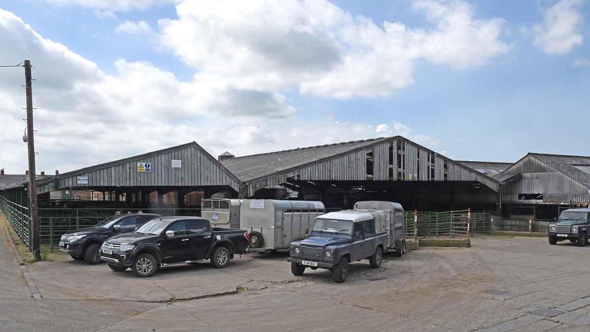 Investigations into financial irregularity at Darlington auction mart