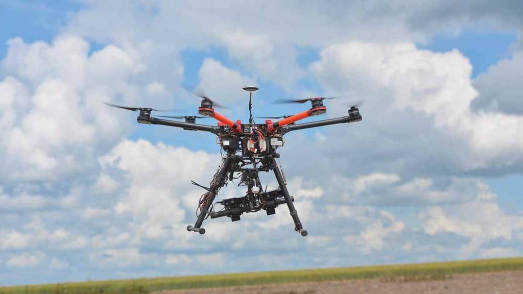 'A bird's eye view of what is happening' - drone potential for maize crop agronomy