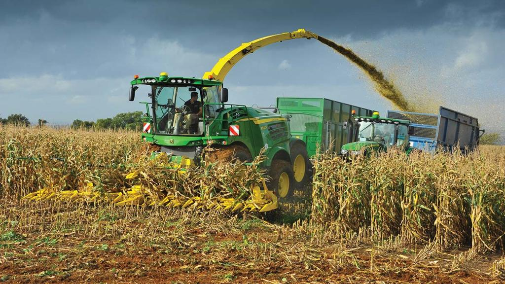 Top tips: How livestock farmers can get the most from maize silage