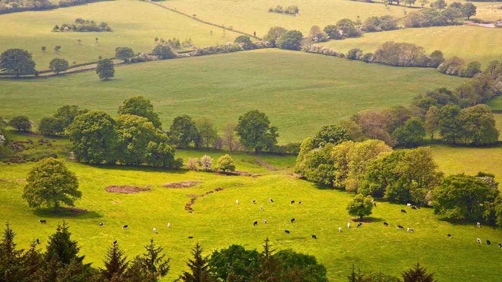 Lords call for creation of joint Defra-Treasury Ministerial post to protect rural funding
