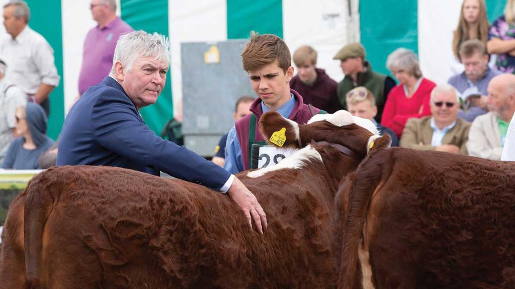 Young Farmer Focus: William Awan, 17 - 'My farming started with two heifers for my ninth birthday'
