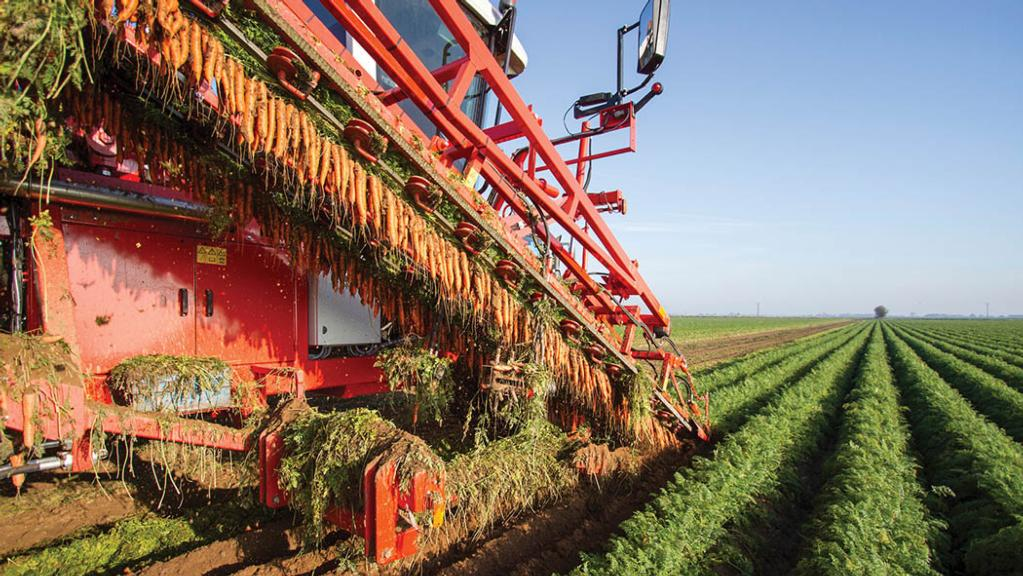 Price increases put focus on food security, say farming groups