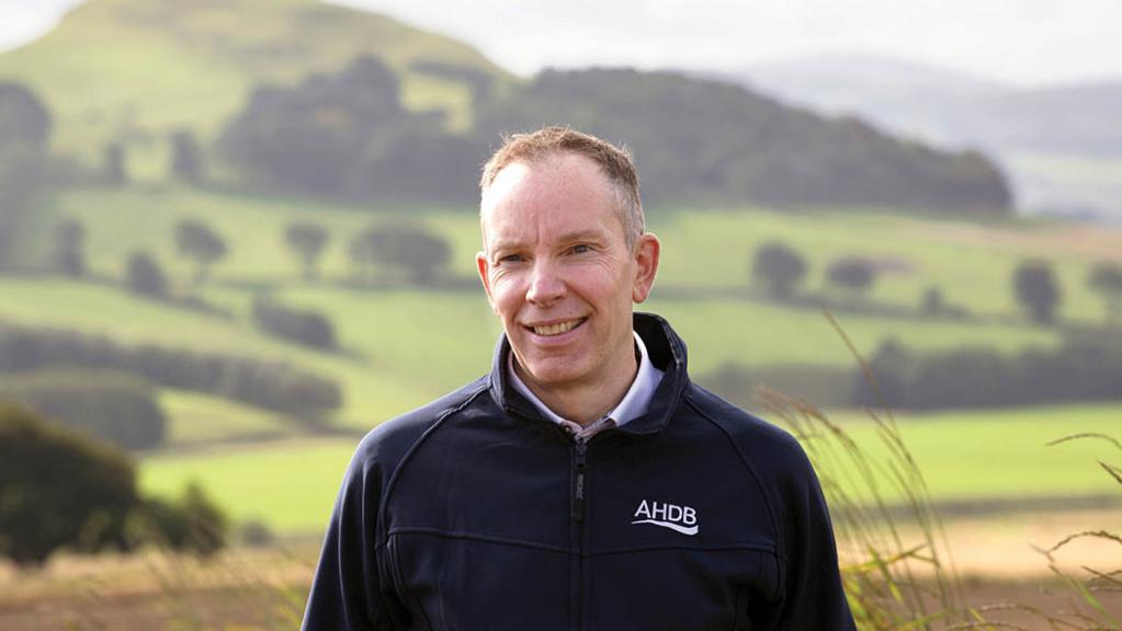 AHDB must 'up its game' in Scotland