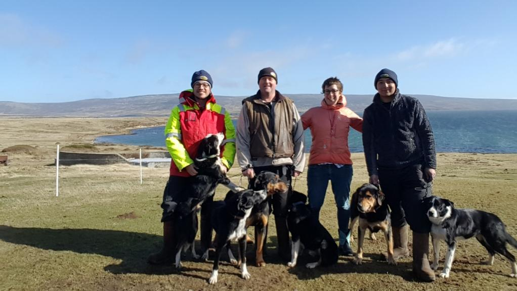 Ag in my Land: Farming in the Falklands