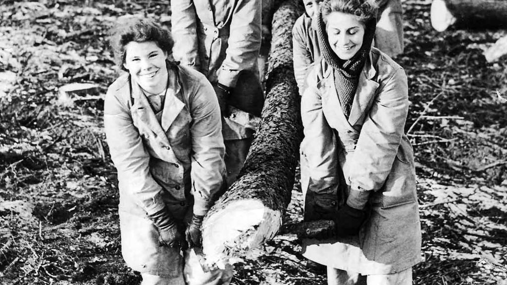 Backbone of Britain: The forgotten women of the Timber Corps