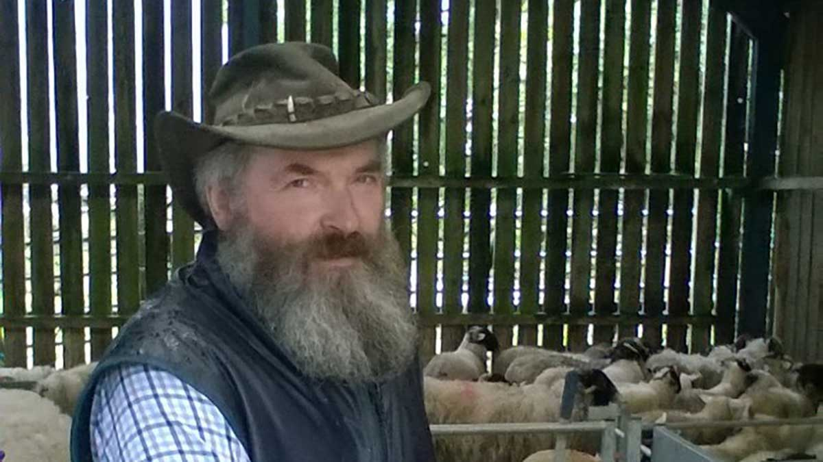 'This is a real worry for farmers' - man whose dogs killed 17 sheep avoids jail