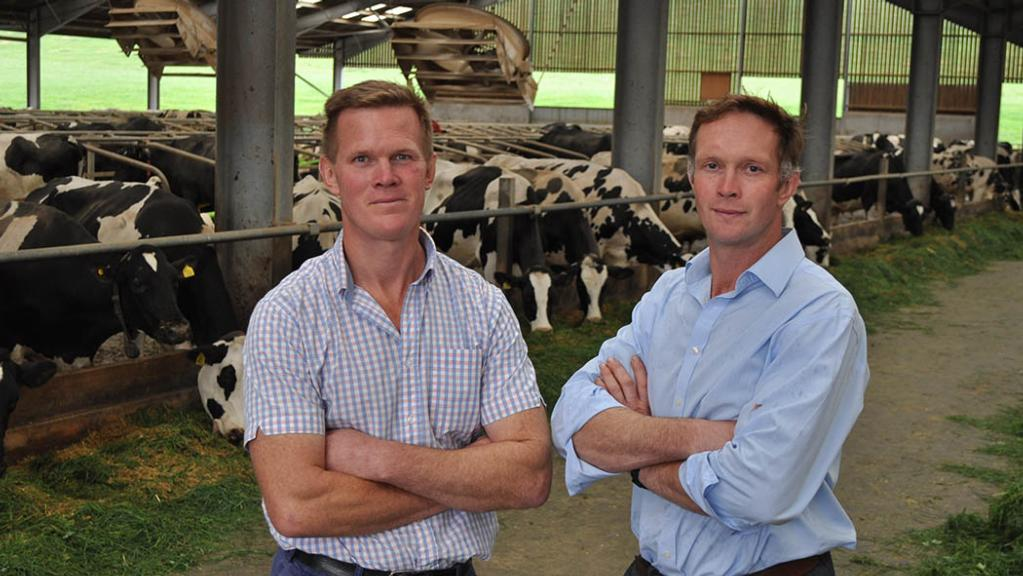 Dairy special: Focusing attention through use of KPIs