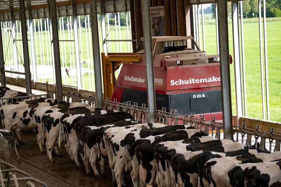 Multiple buildings and cow groups can be looked after.