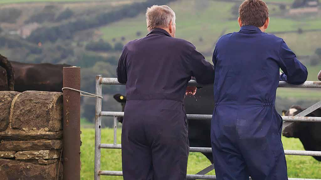 63 per cent of polled UK farmers have no succession plan in place