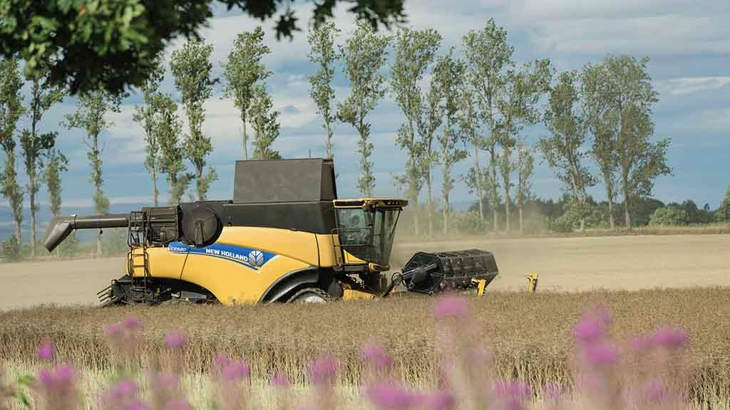 Harvest 2019: Oilseed rape crops suffer as combines struggle to get on