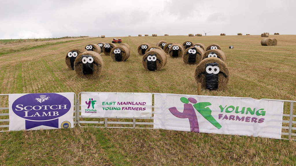 Take a look at these impressive bale works of art created by Young Farmers