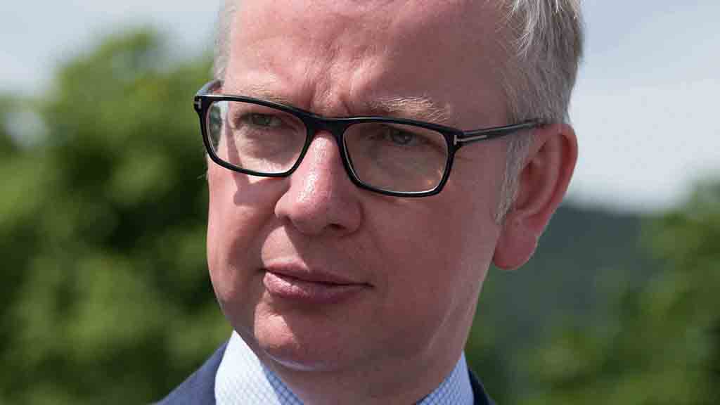Gove open to increasing farming budget after Brexit, says conservation charity
