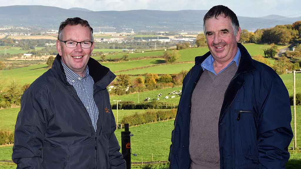 How the Montgomery brothers are optimising their herd's output from grazing