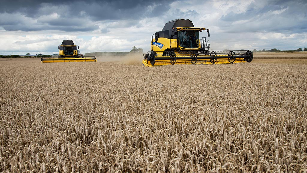Harvest 2019: Widespread sprouting triggered by warm wet weather
