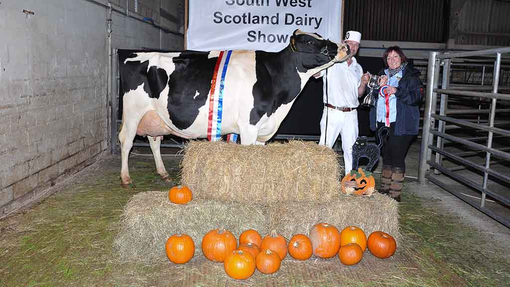 Holstein champion, Colvend Atlas Rox, from Steven and Tracey Roan, Dalbeattie