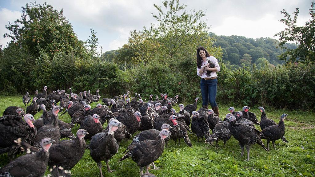 Farm profile: Turkey venture turns into flourishing family firm