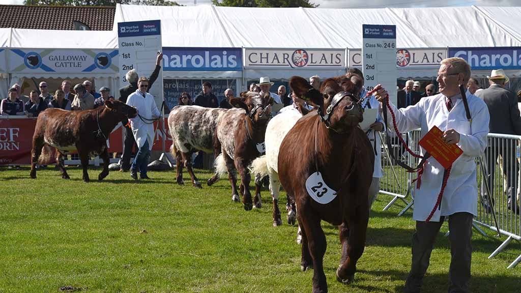 Members' fear for RHASS reputation as Royal Highland Show manager exits