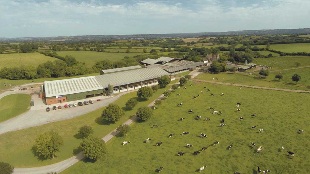 Business profile: Lye Cross Farm, Bristol