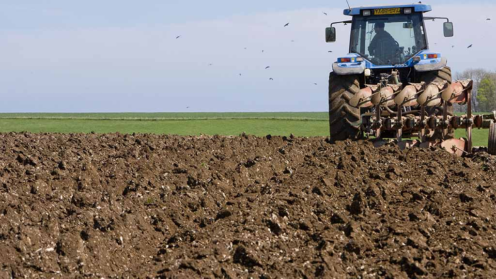 Degradation of soils costing UK £1.2 billion each year