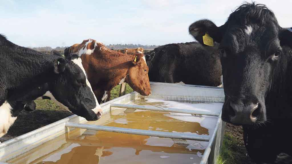 Farmers left high and dry by water company warn others to be on guard