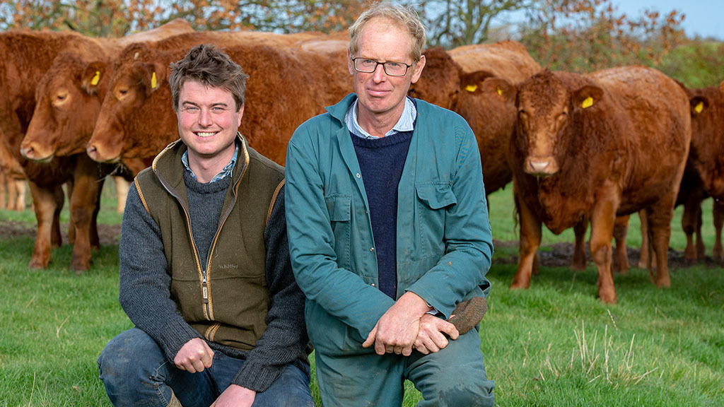 Pedigree South Devon herd thrives with commercial focus