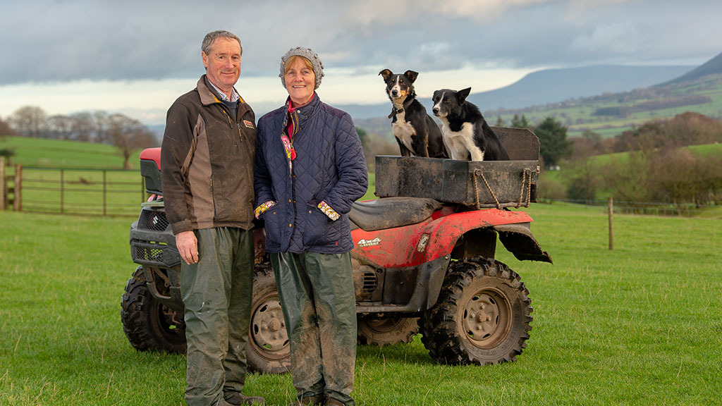 Sheep and lambing: A radical change to sheep farming system