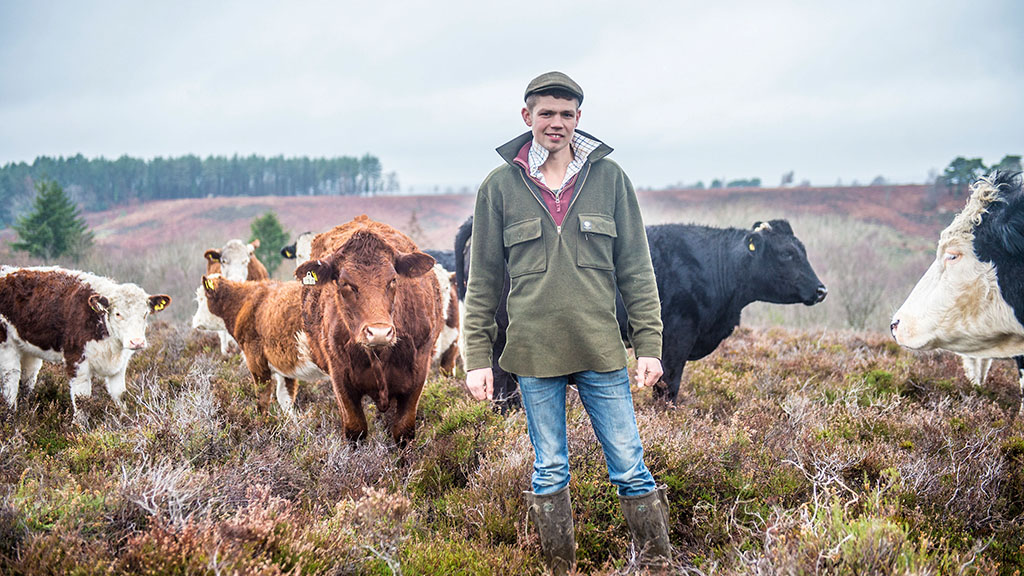 Farm profile: Young farmer builds beef business on 36,000ha forest
