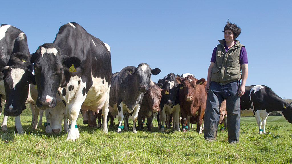 Industry reaction: Abi Reader, dairy farmer, Cardiff, South Wales