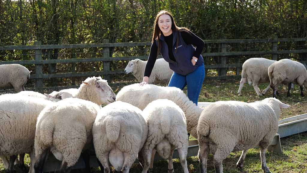 Young Farmer Focus: Taila Ward - 'There is a lack of understanding about careers in farming and it puts people off'