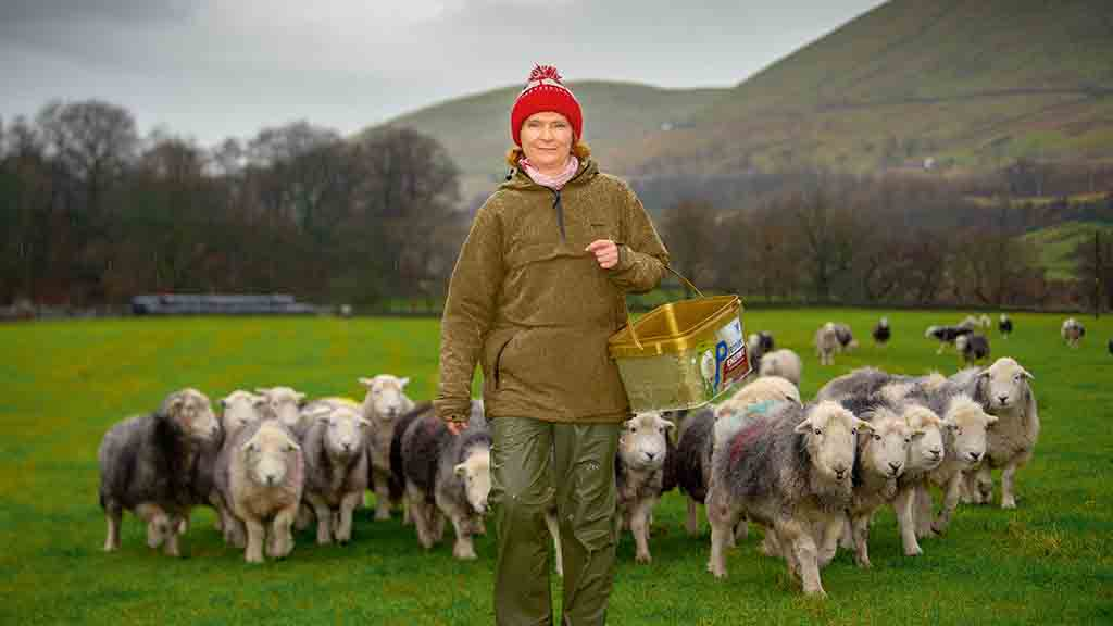 Backbone of Britain: 'I want people to value hill farmers because, generally, people don't'