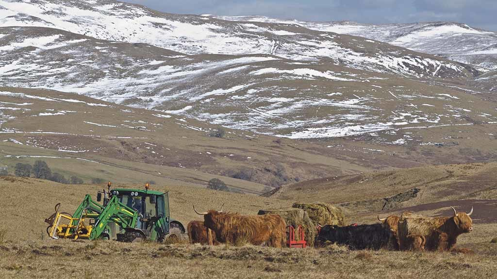 Industry plea for Scottish Government to 'move on' with developing new ag policy