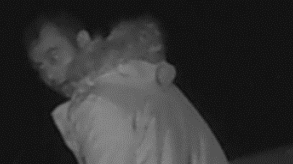 POLICE APPEAL: CCTV image released after multiple sheep thefts from farm