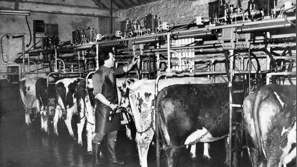 Milking Systems 032.jpg