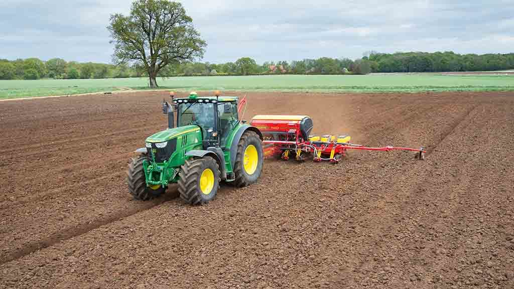 Maize for feed & energy: Getting maize off to a flying start