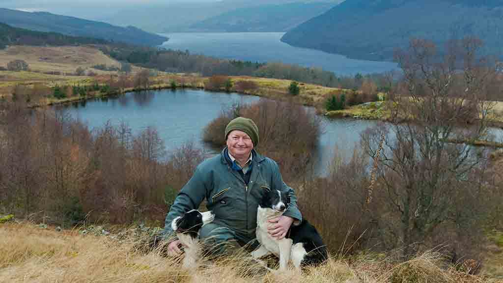 Sheep special: Perthshire farm puts renewed focus on sheep