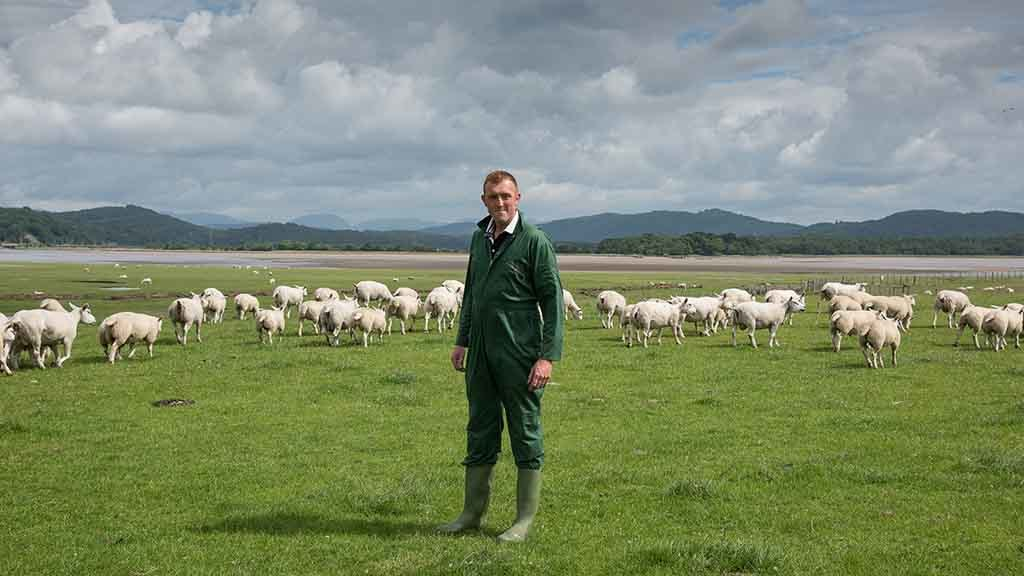 Will Case: 'We're dreaming of spring, but finding lambing staff has been tricky this year'