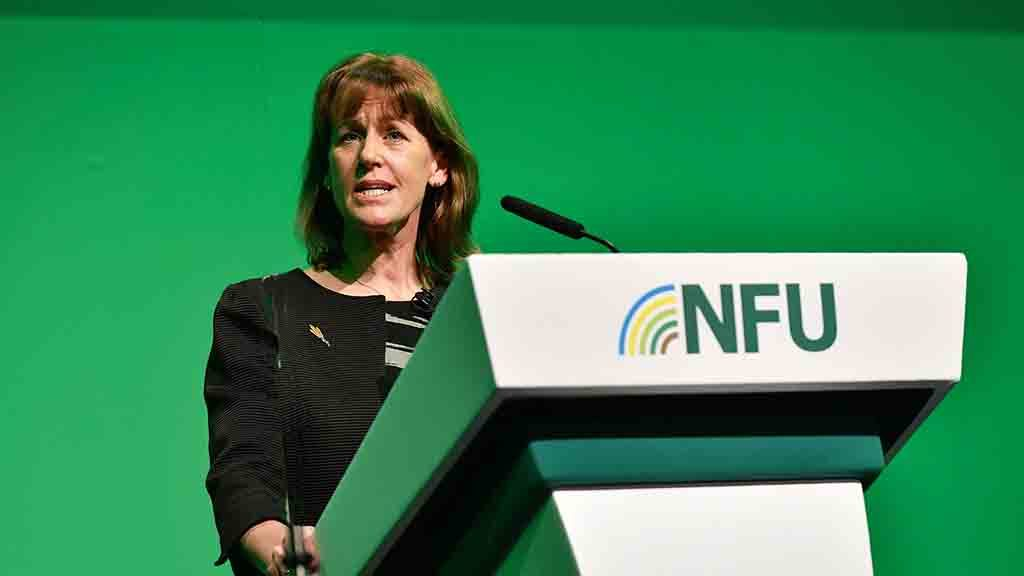 Agriculture Bill not expected to pass until 'summer or potentially autumn'