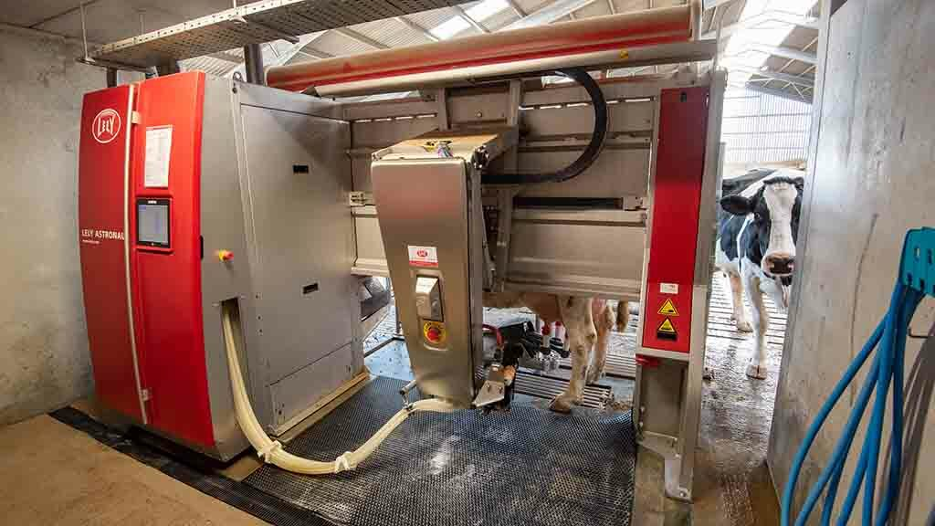 One of the Lely A4 Astronaut robotic milking machines.