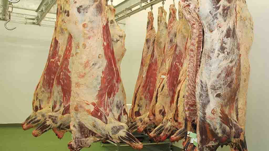 Meat giant JBS hit by cyber attack