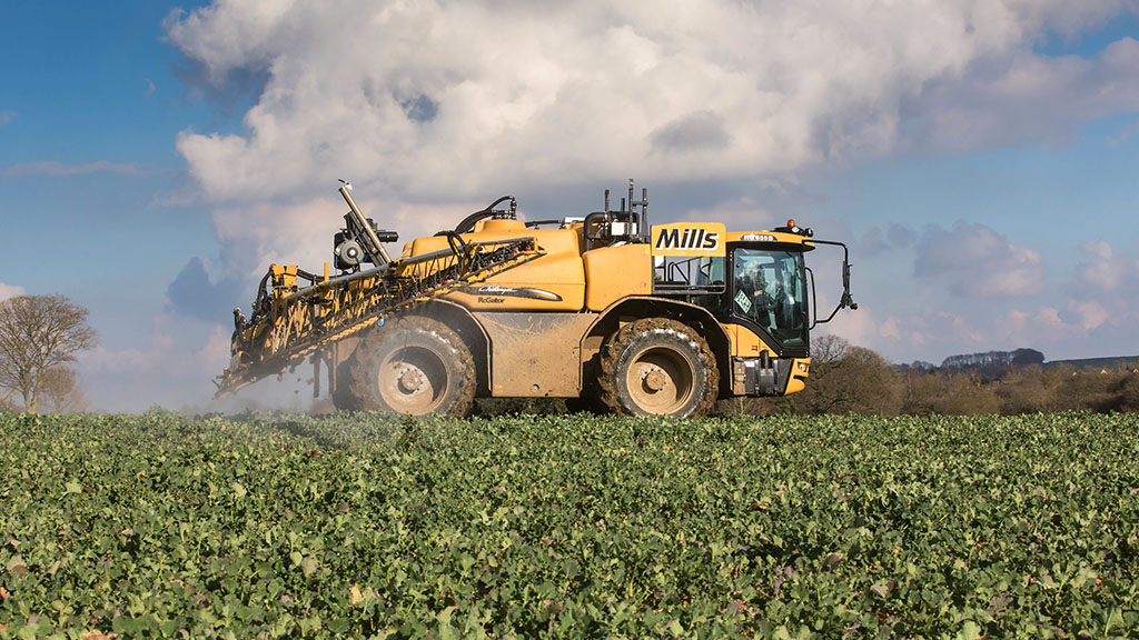Magnesium could be critical for high oilseed yields