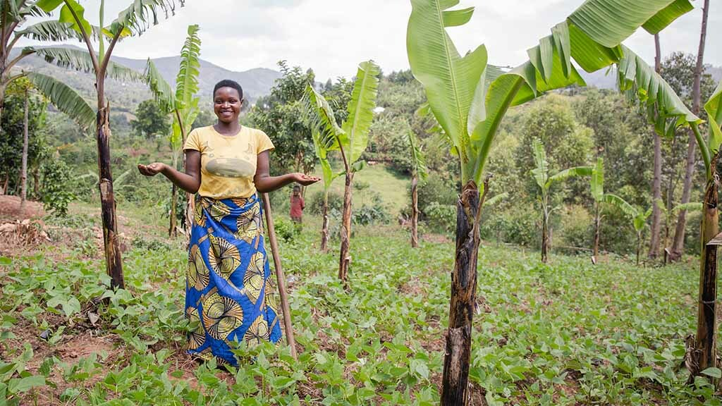 Ag in my Land: Life on a Ugandan coffee farm