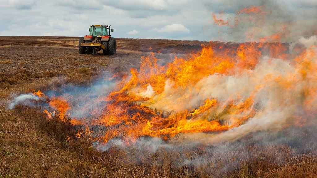 Campaigners complain as spring muirburn season leads to controversy again