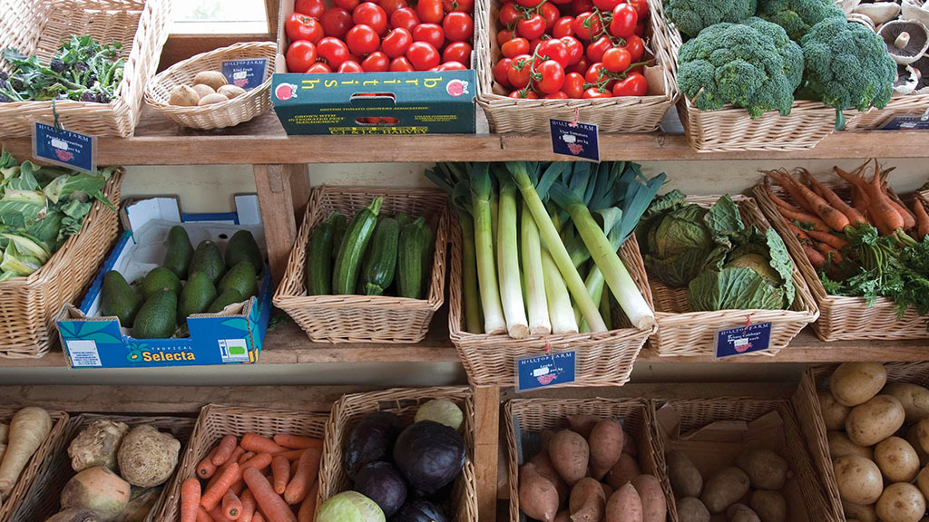 Industry responds to National Food Strategy